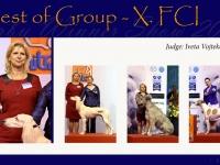 w-20_BOG_FCI_10