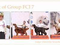 skupina-7