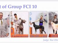 skupina-10
