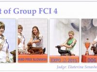 skupina-4