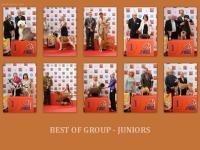 10_juniori