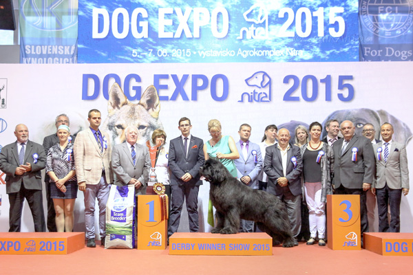 Best in Show (BIS) - Winners of the International Dog Show «Derby Winners Show 2015», Nitra, 07 June 2015 (Sunday)