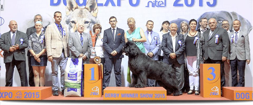 DERBY WINNER 2015