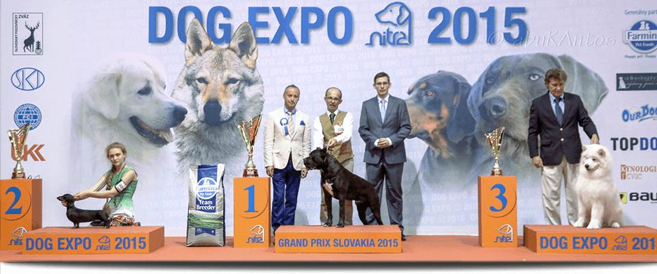 Dog Expo Nitra 2015