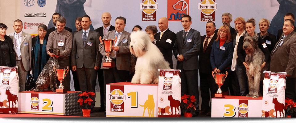 Nitra Cacib DOG EXPO