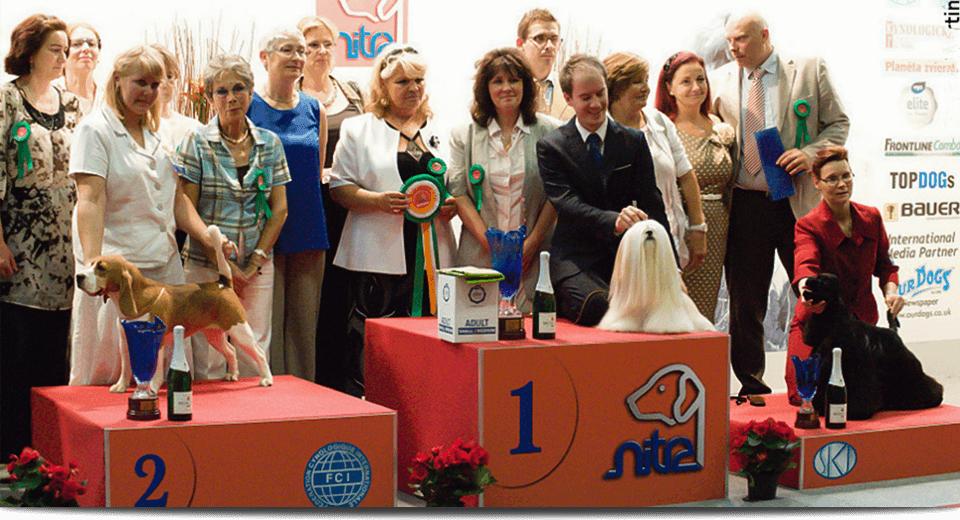 BIS 20111