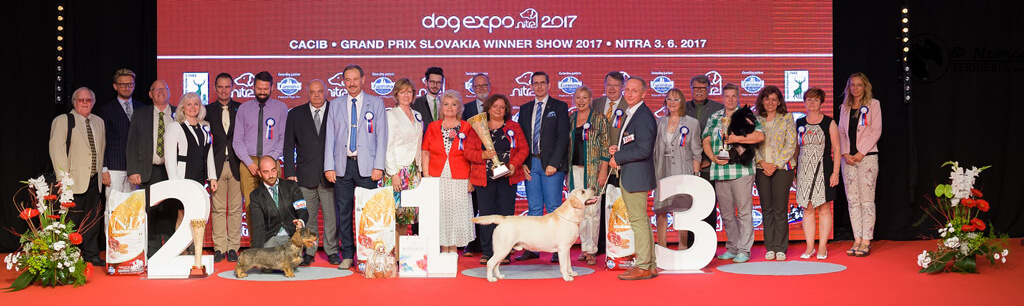 BEST IN SHOW GRAND PRIX SLOVAKIA