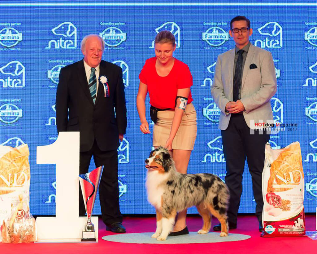 JUNIOR BEST IN SHOW PRESIDENT CUP 2017