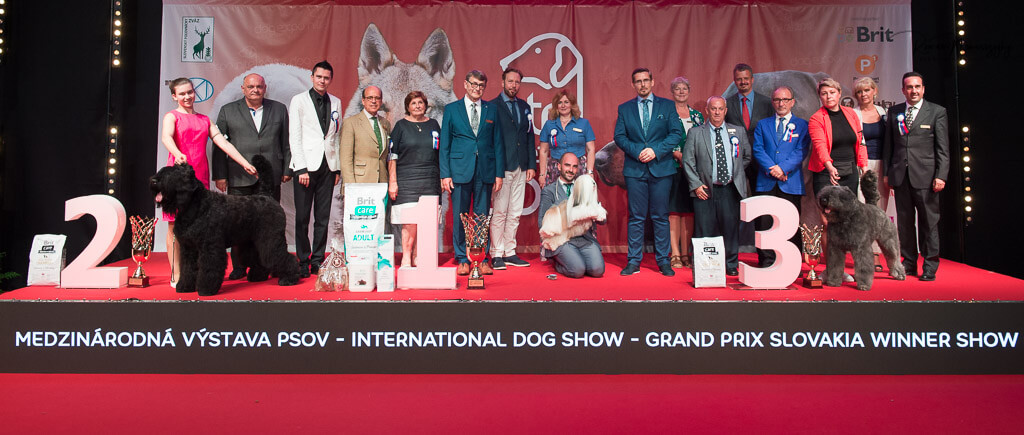 BIS 9.6.2018 GRAND PRIX SLOVAKIA WINNER SHOW 2018